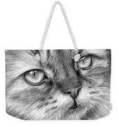 Beautiful Cat Weekender Tote Bag by Olga Shvartsur