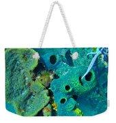 Beautiful Coral  Weekender Tote Bag