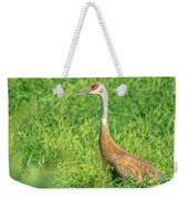 Beautiful Crane Weekender Tote Bag