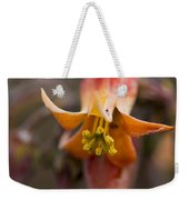 Beautiful Echeveria Bell Weekender Tote Bag