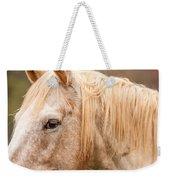 Beautiful Gray Horse Portrait Weekender Tote Bag