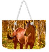 Beautiful Horse In The Autumn Aspen Colors Weekender Tote Bag by James BO  Insogna