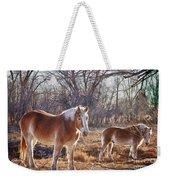 Beautiful Horses Weekender Tote Bag