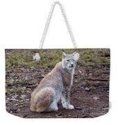 Beautiful Lynx Weekender Tote Bag