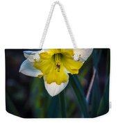 Beautiful Narcissus Weekender Tote Bag