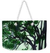 Beautiful Oak Trees Weekender Tote Bag