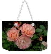 Beautiful Peach Roses Weekender Tote Bag