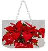 Beautiful Poinsettia Plant - No 2 Weekender Tote Bag