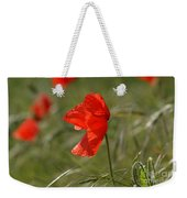 Beautiful Poppies 5 Weekender Tote Bag