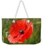 Beautiful Poppies 7 Weekender Tote Bag