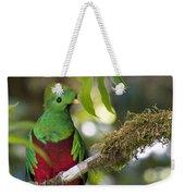 Beautiful Quetzal 1 Weekender Tote Bag