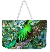 Beautiful Quetzal 2 Weekender Tote Bag