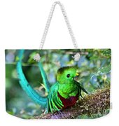 Beautiful Quetzal 5 Weekender Tote Bag