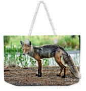 Beautiful Red Fox Weekender Tote Bag