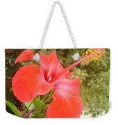 Beautiful Red Hibiscus Flower With Garden Background Weekender Tote Bag