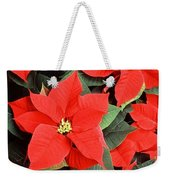 Beautiful Red Poinsettia Christmas Flowers Weekender Tote Bag
