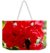 Beautiful Red Roses Weekender Tote Bag