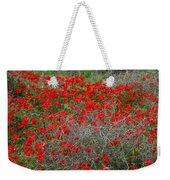 Beautiful Red Wild Anemone Flowers In A Spring Field Weekender Tote Bag