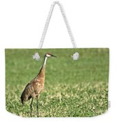 Beautiful Sandhill Crane Weekender Tote Bag