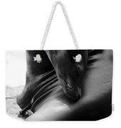 Beautiful Sea Lion - Black And White Weekender Tote Bag