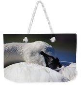 Beautiful Trumpeter Swan Weekender Tote Bag