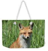 Beautiful Vixen Weekender Tote Bag