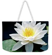 Beautiful Water Lily Capture Weekender Tote Bag