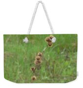 Prickly Histle Beauty Among The Grasses Weekender Tote Bag