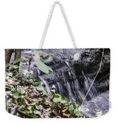 Beauty And The Rapids Weekender Tote Bag