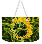 Beauty From The Back Weekender Tote Bag by Christi Kraft