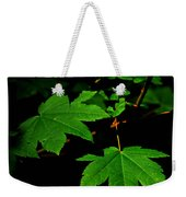 Beauty In Nature Weekender Tote Bag