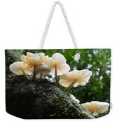 Beauty Of Mushrooms Argentina Weekender Tote Bag