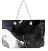 Beauty Of The Rex Cat Weekender Tote Bag
