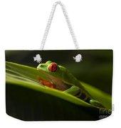 Beauty Of Tree Frogs Costa Rica 7 Weekender Tote Bag