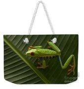 Beauty Of Tree Frogs Costa Rica 8 Weekender Tote Bag