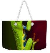 Beauty Of Tree Frogs Costa Rica 9 Weekender Tote Bag