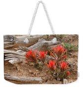 Beauty On 25 Mesa  Weekender Tote Bag