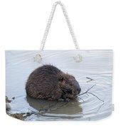 Beaver Chewing On Twig Weekender Tote Bag
