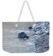 Beaver Chews On Stick Weekender Tote Bag