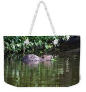 beaver swims in NC lake Weekender Tote Bag