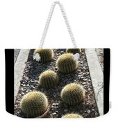 Bed Of Barrel Cacti  Weekender Tote Bag