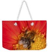 Bee On Dahlia - 2 Weekender Tote Bag