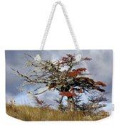 Beech Tree, Chile Weekender Tote Bag