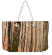 Beech Wood In Autumn Weekender Tote Bag
