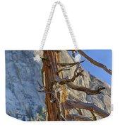 Beetle Barren Pine Weekender Tote Bag