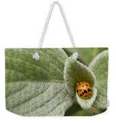 Beetle Pad Weekender Tote Bag