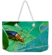 Beetle Sneeking Around Weekender Tote Bag