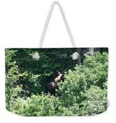 Behind The Shrubs Weekender Tote Bag