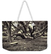 Bench And Trees Bw Weekender Tote Bag