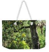 Bench Under The Magnolia Tree Weekender Tote Bag